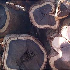 Ebony Wood