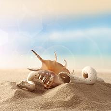 Warm Sand