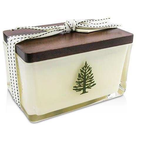 Thymes Frasier Fir Seasonal Holiday 2 Wick Candle 14Oz