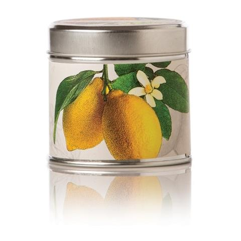 Rosy Rings Citrus Lemon Blossom & Lychee Soy Tin Candle 8oz