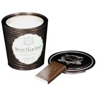 Aquiesse Portfolio Collection Scented Tin Candle White Tea & Mint 11oz