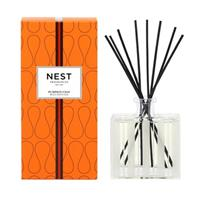 Nest Pumpkin Chai Reed Diffuser (Alcohol Free) 5.9oz