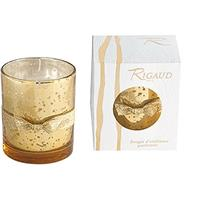 Rigaud Cypres Medium Candle Holiday 5.99 oz