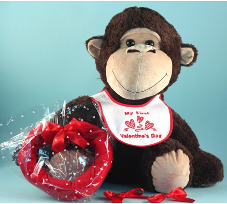 Giant Plush Monkey Valentine's Day Baby Gift Set