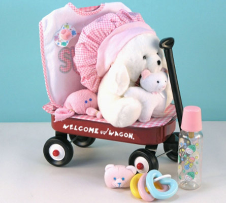 Welcome Wagon Baby Girl Gift