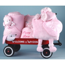 Puppy Love Welcome Wagon Baby Girl Gift