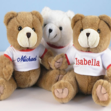 Plush Bear Personalized Baby Gift
